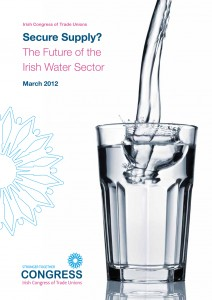 The Future of the Irish Water Sector